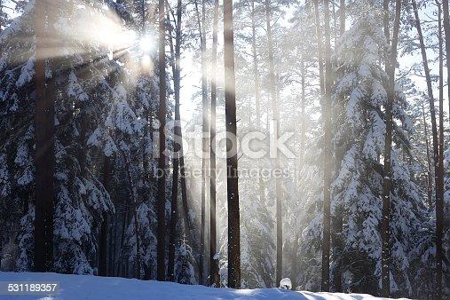 istock Winterdream2 531189357