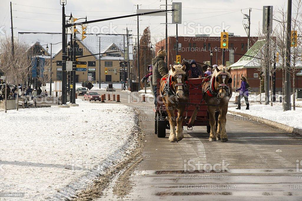 Winterfest Horse & Buggy Ride stock photo