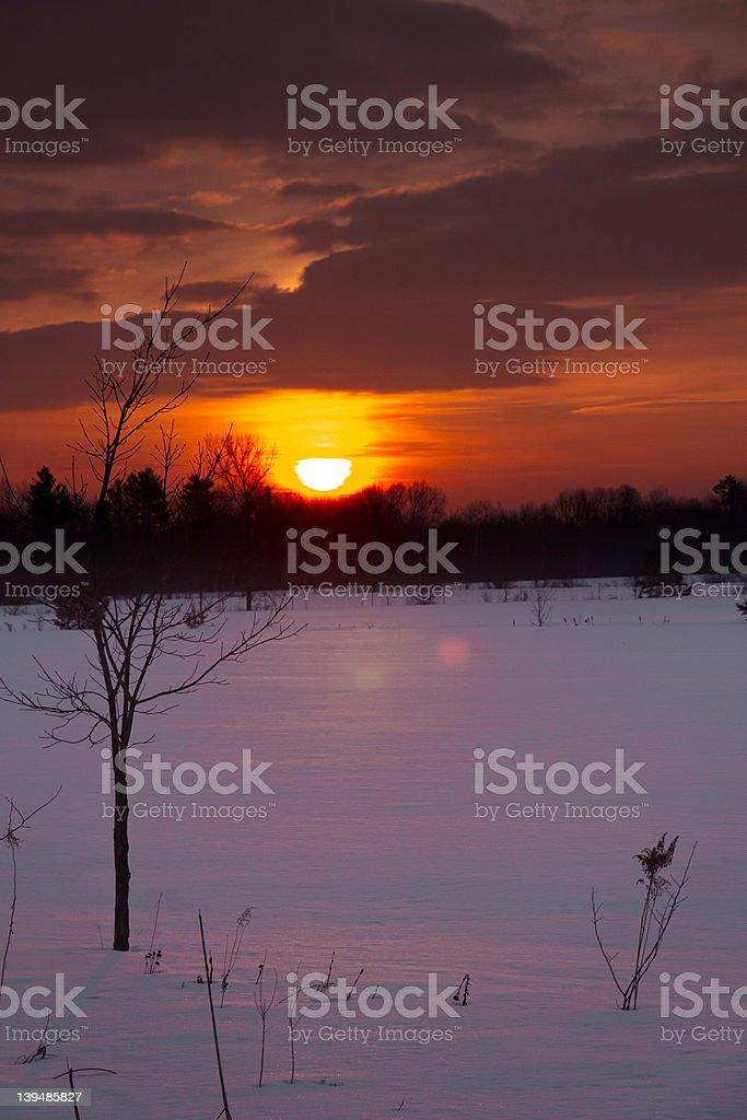 Winterfire royalty-free stock photo
