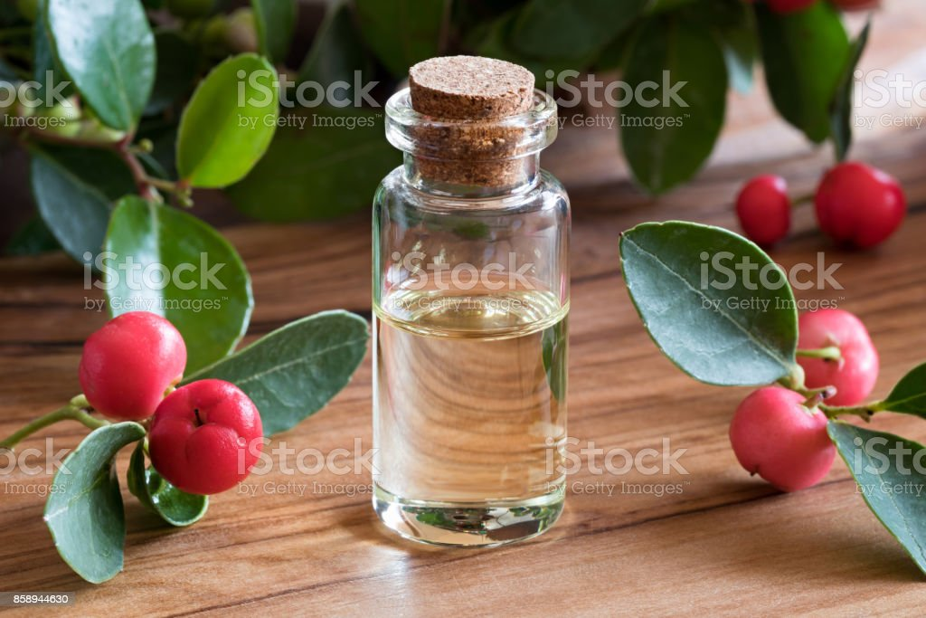 Wintergreen essential oil stock photo
