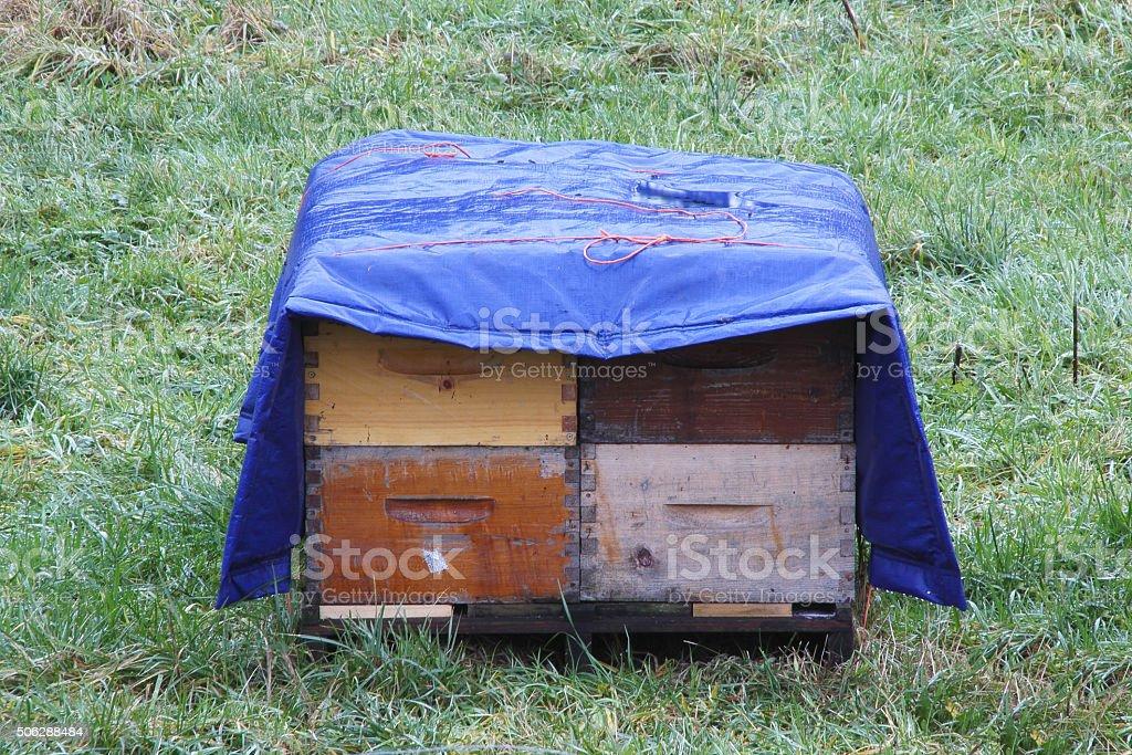 Winterized Bee Hive Boxes stock photo