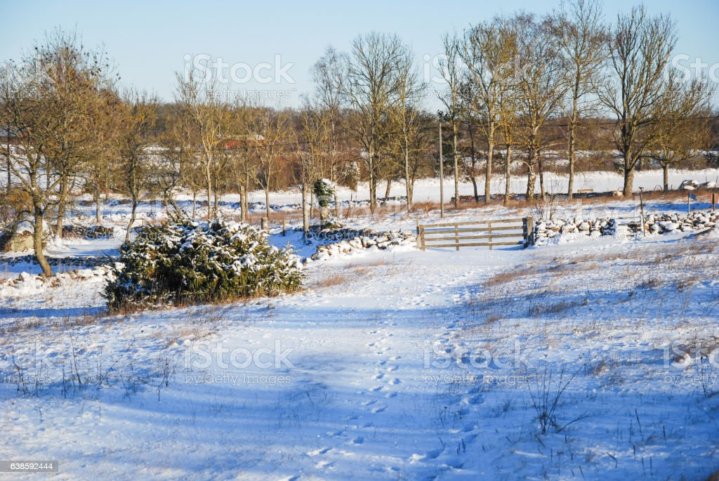 Winterland with an old wooden gate by a stone wall stock photo