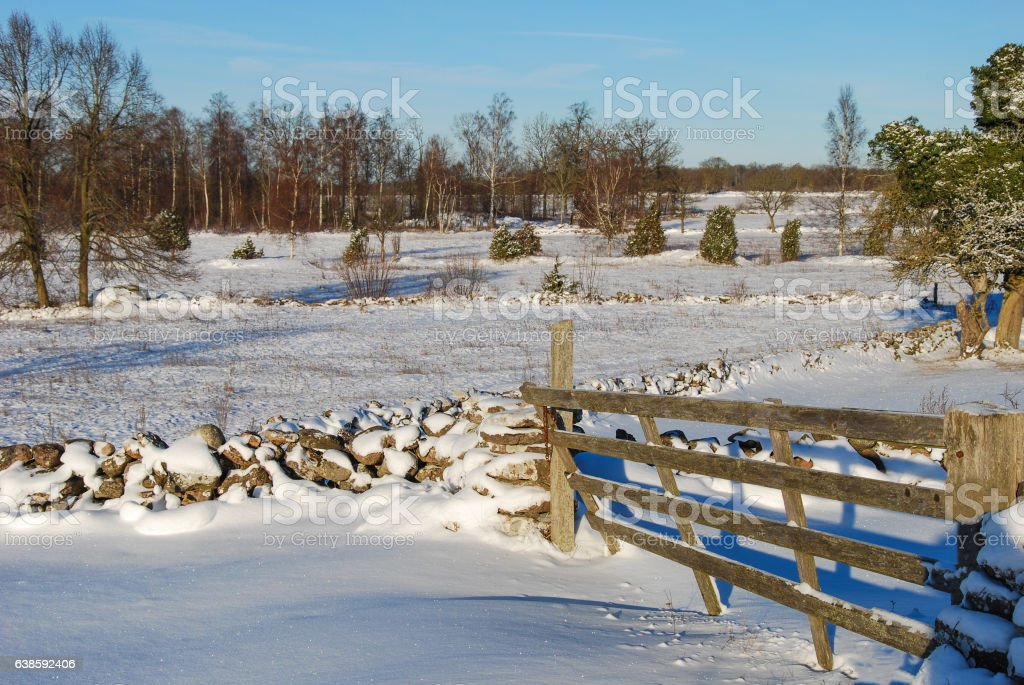 Winterland with an old wooden gate stock photo