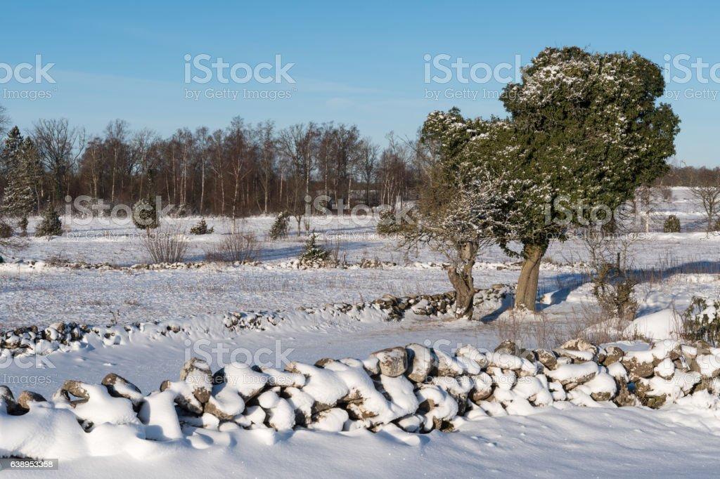 Winterland with snowy stone walls stock photo