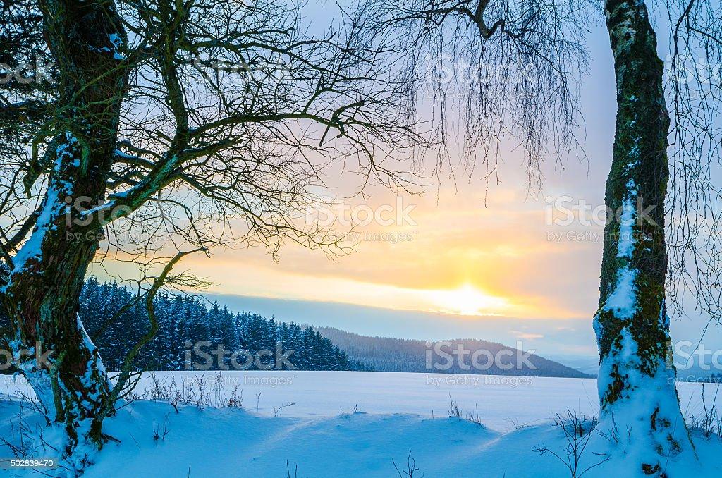 Winter-Landscape at sunset stock photo