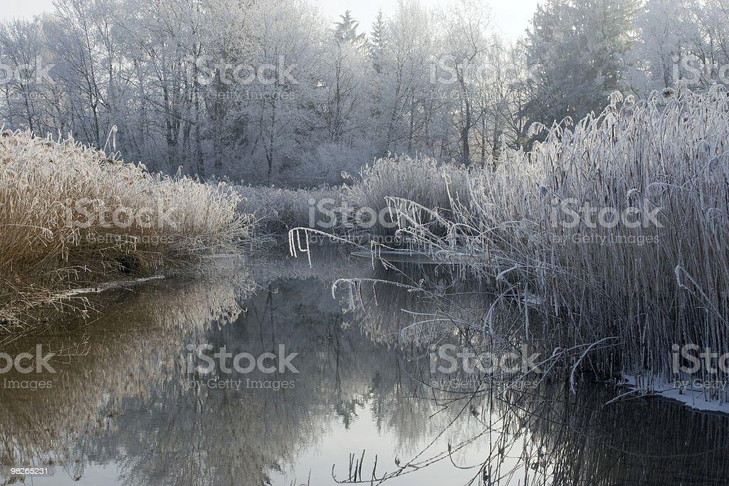 Winterlandschaft mit Raureif royalty-free stock photo