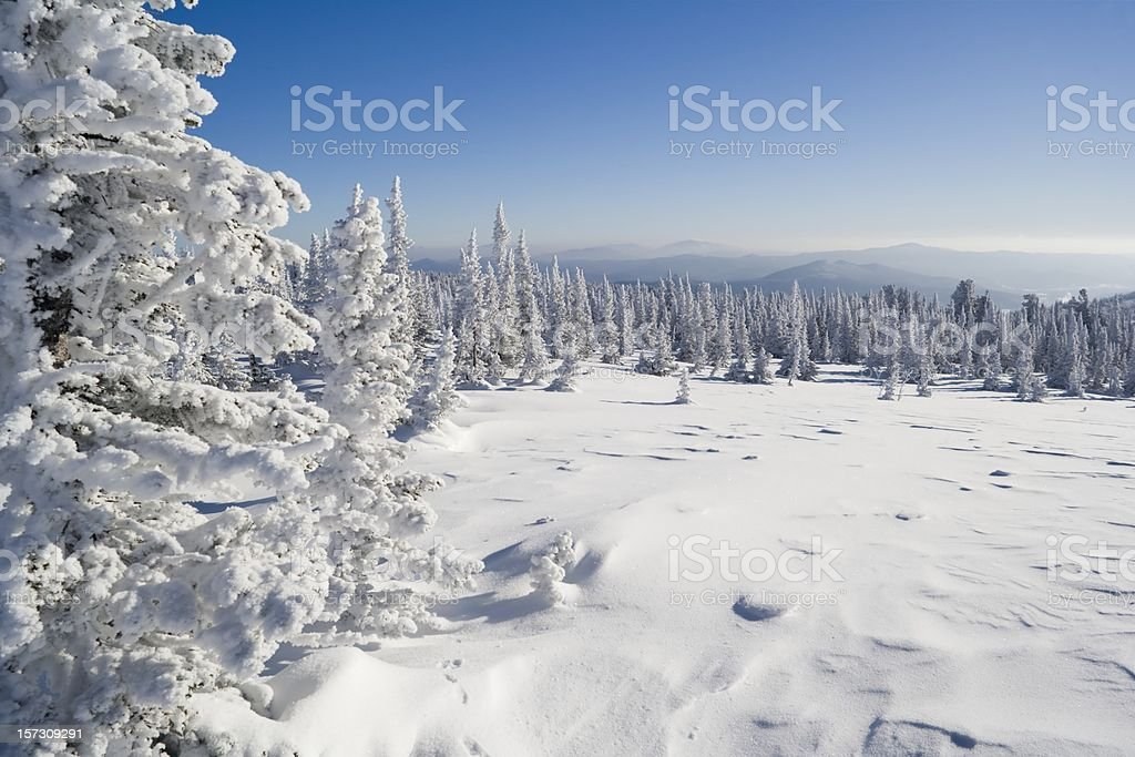 Winterpark.  Sheregesh. royalty-free stock photo