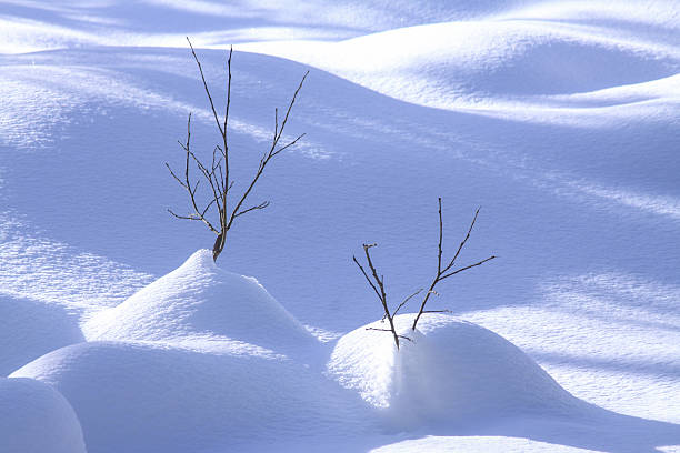 Winterromantik – Foto