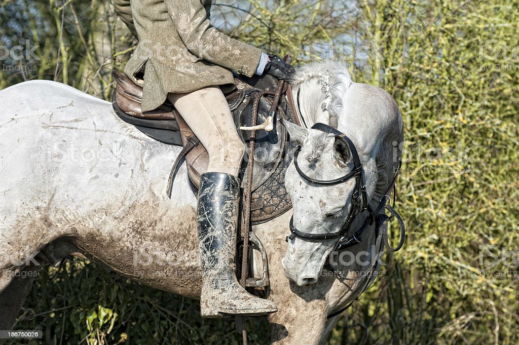 Winter's day out hunting stock photo