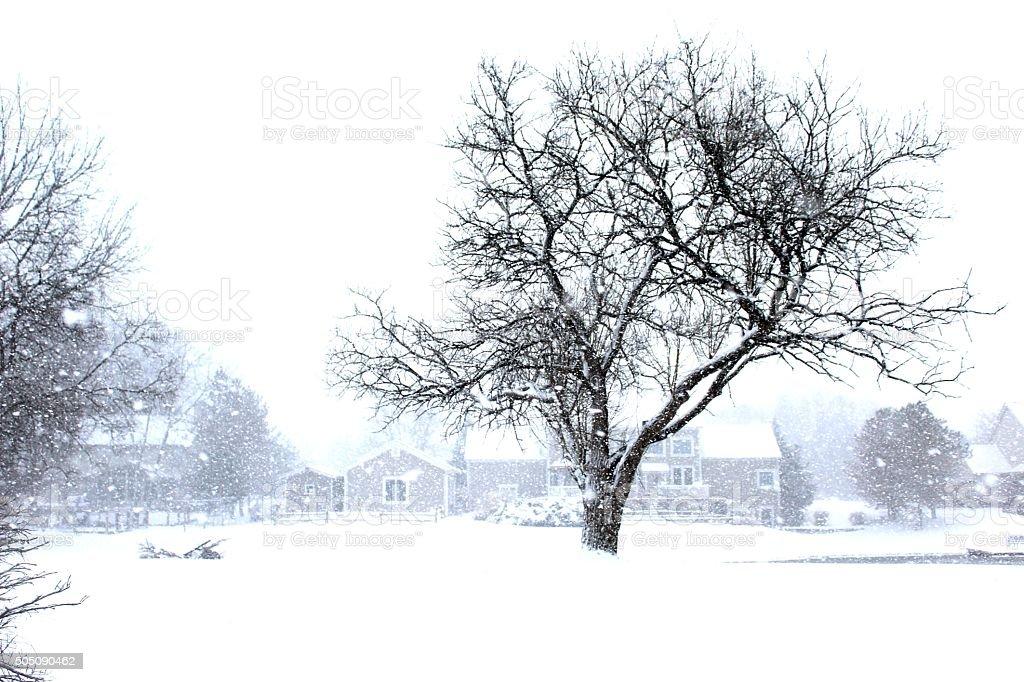 Winter's Fury stock photo