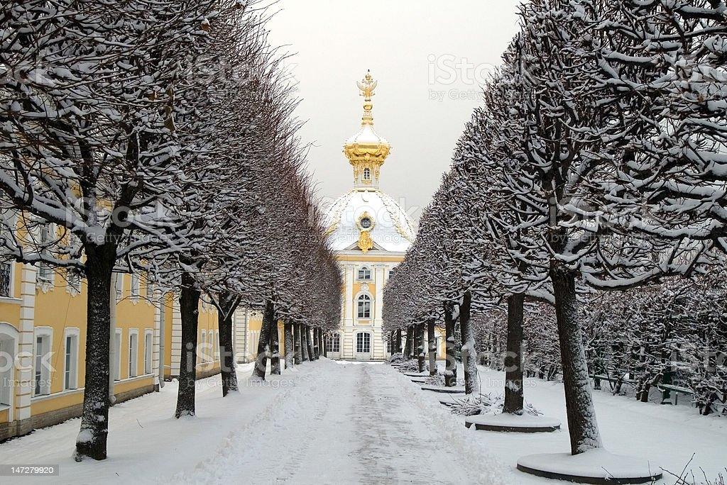 Winter's garden in Peterhof, St. Petersburg royalty-free stock photo