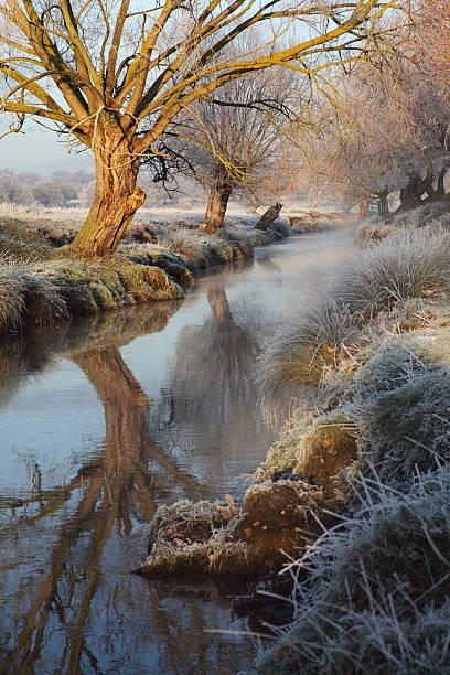 Winter's morning stock photo