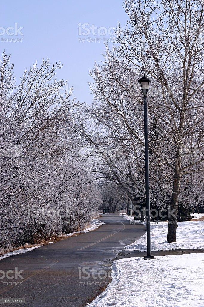 Winter's Path 2 royalty-free stock photo