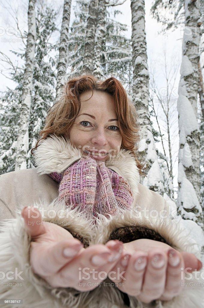 Ritratto di invernale foto stock royalty-free