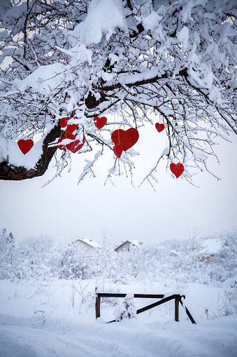 Hanging Red Hearts on a Tree. This File is Very Suitable for Valentine's Day.
