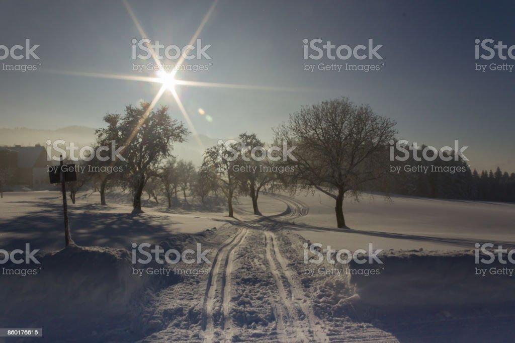 Wintersun, blauer Himmel, Schnee, Attersee, Österreich, Trail – Foto
