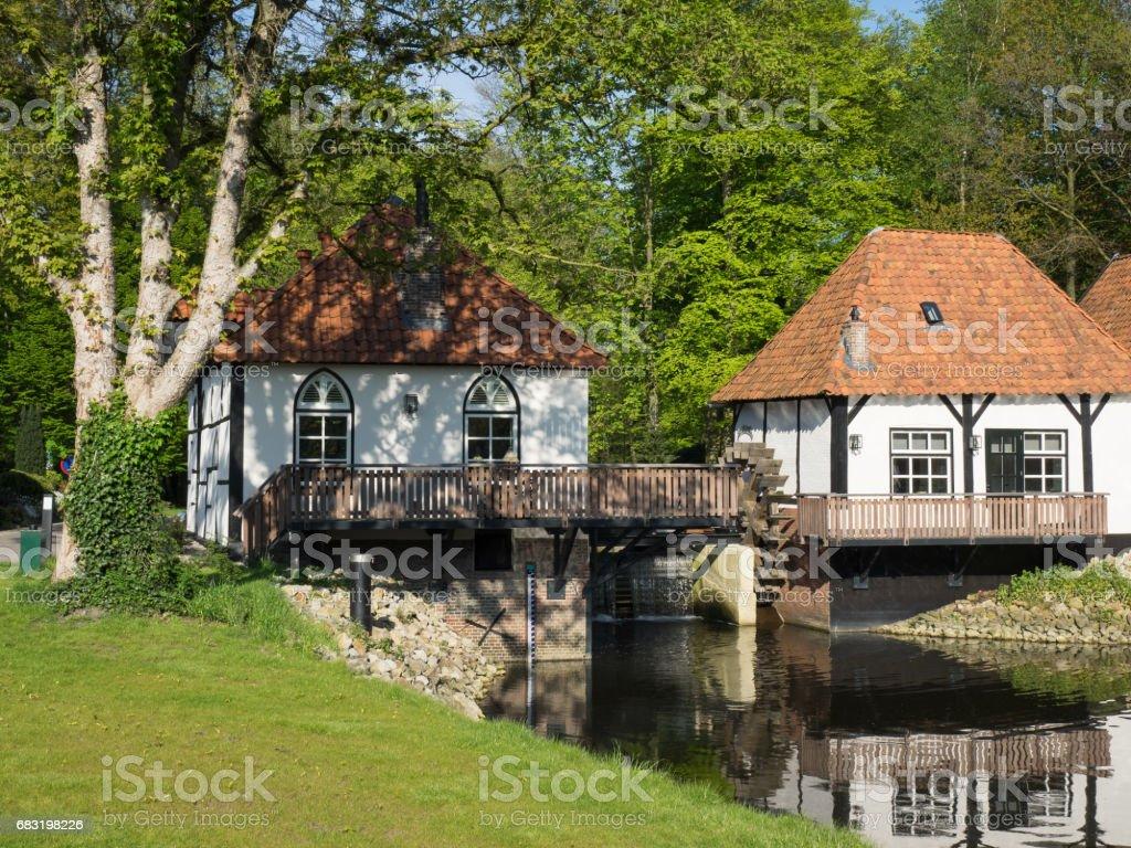 winterswijk in the netherlands 免版稅 stock photo