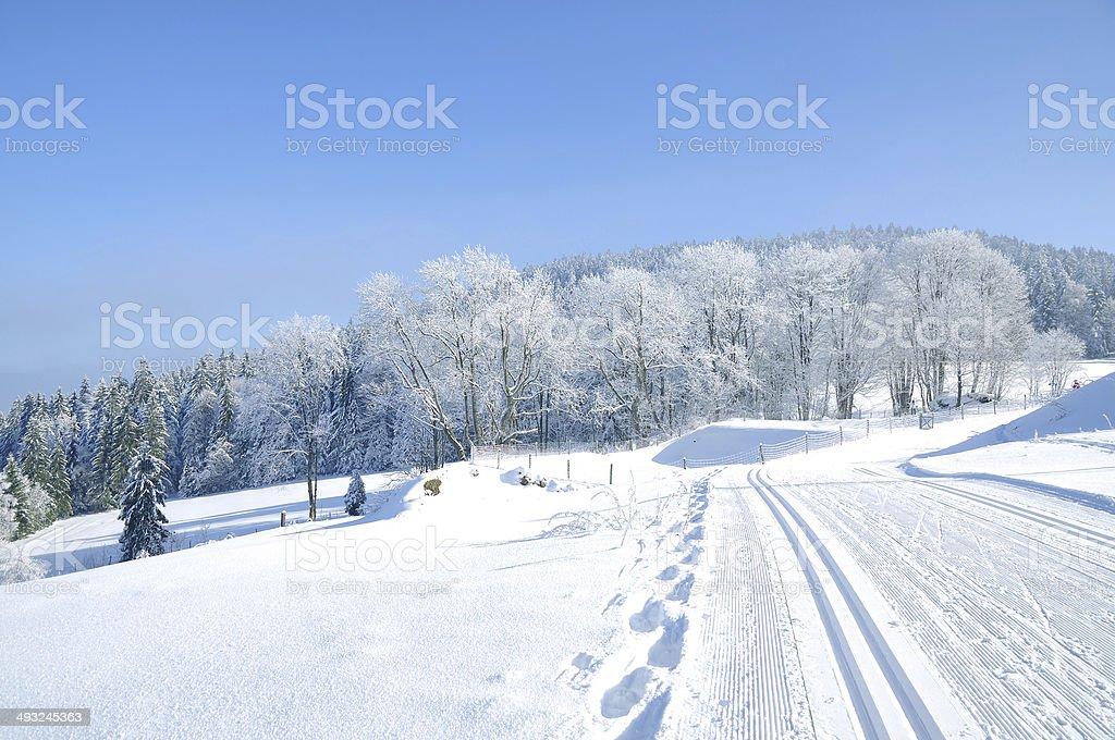 Winter in den Bayerischen Wald, Deutschland – Foto