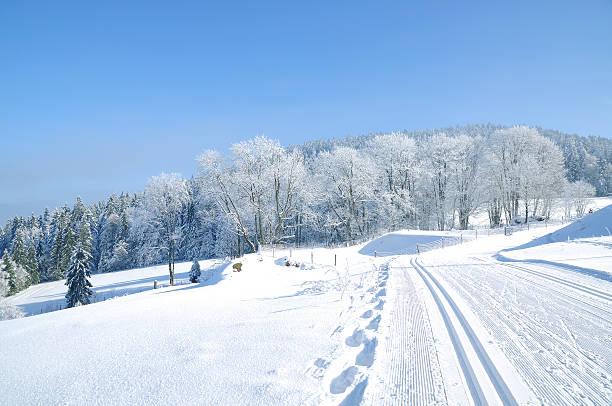 wintertime in bavarian forest,germany - bayerischer wald bildbanksfoton och bilder