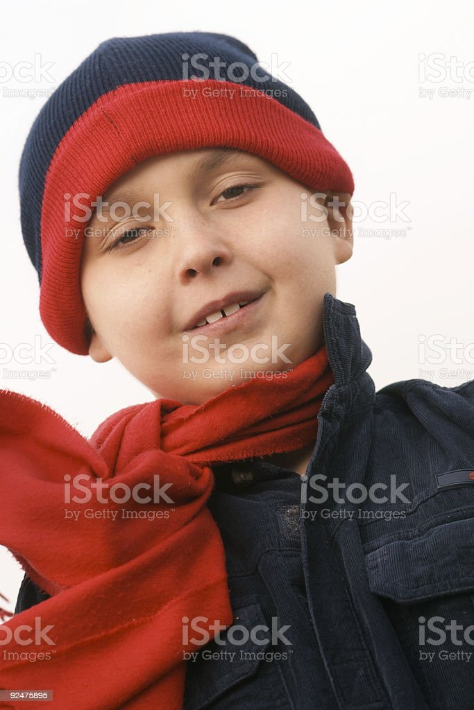 Wintertime royalty-free stock photo