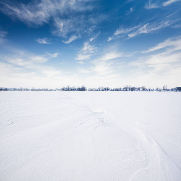 Wintry Landscape  horizon over land stock pictures, royalty-free photos & images