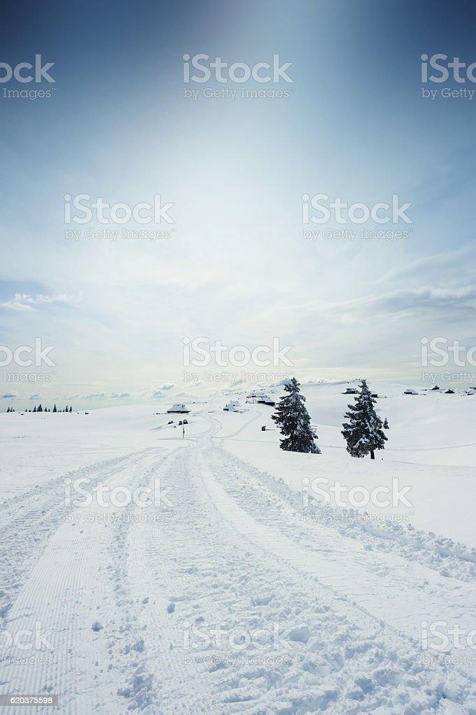 Polarny Krajobraz  zbiór zdjęć royalty-free