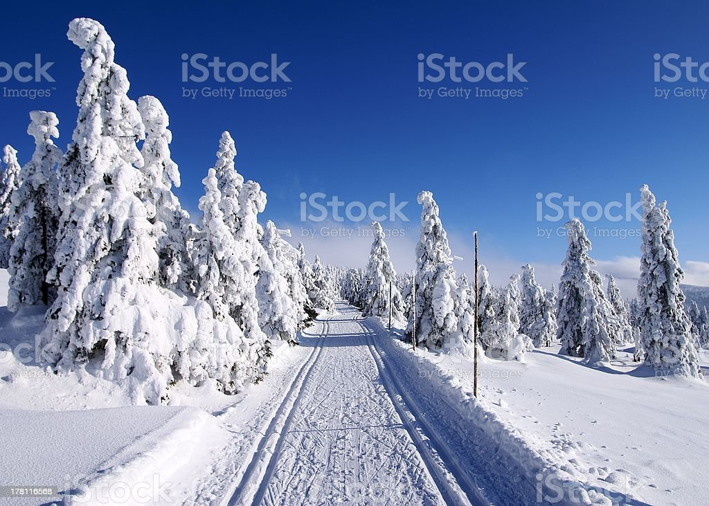 wintry landscape scenery with modified cross country skiing way royalty-free stock photo