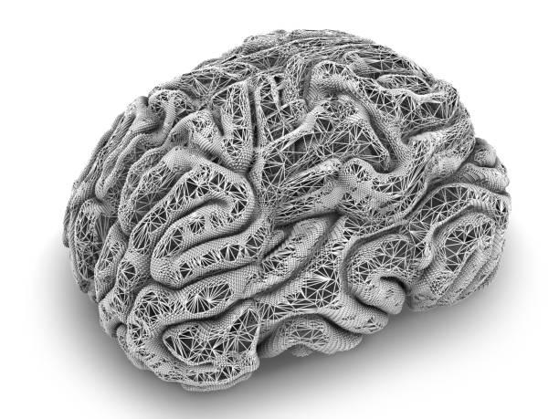Draht Gehirn Kunst – Foto
