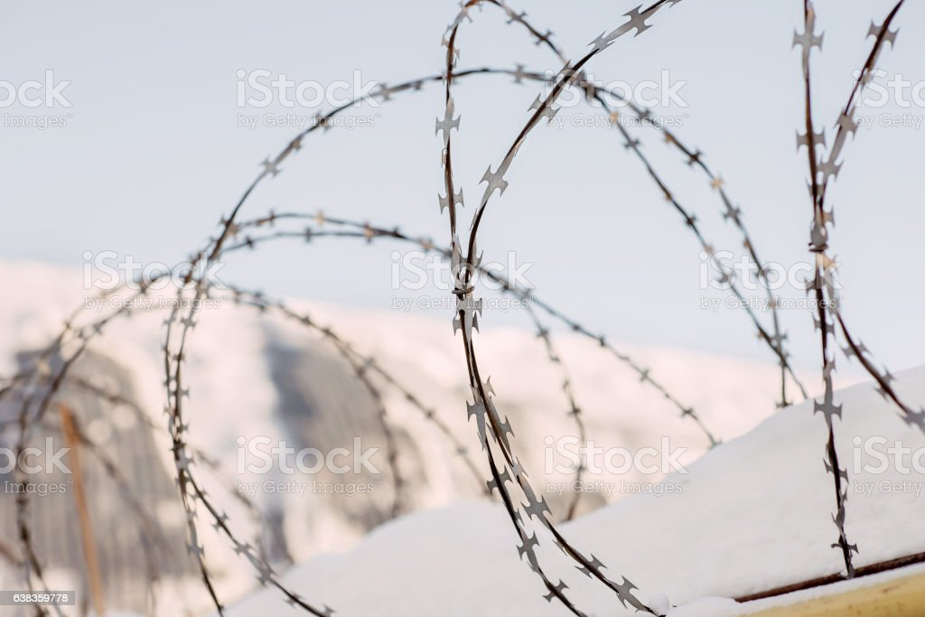 Wire Entanglements Against The Background Of The Blue Sky stock ...