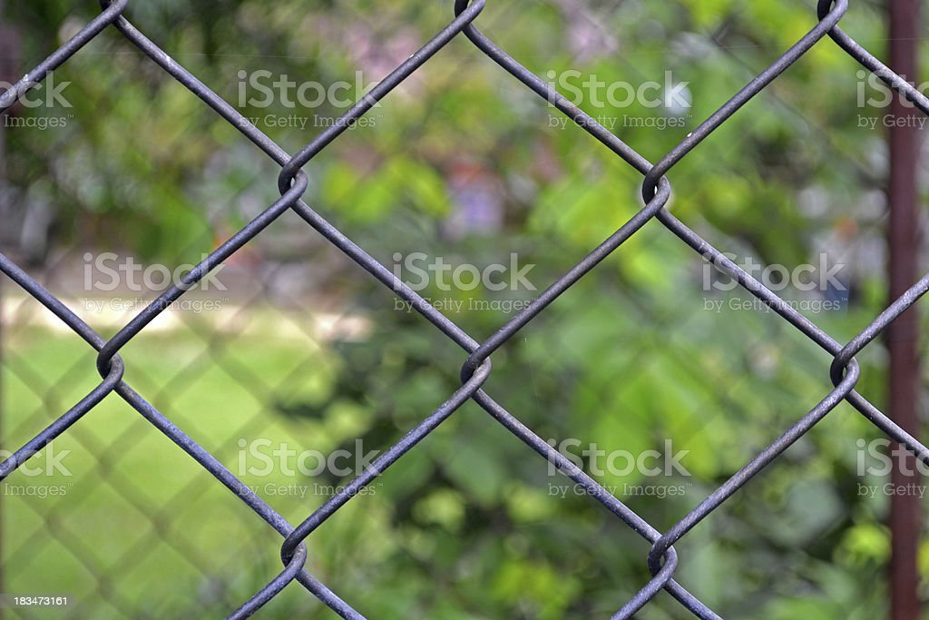 Wire fence detail royalty-free stock photo