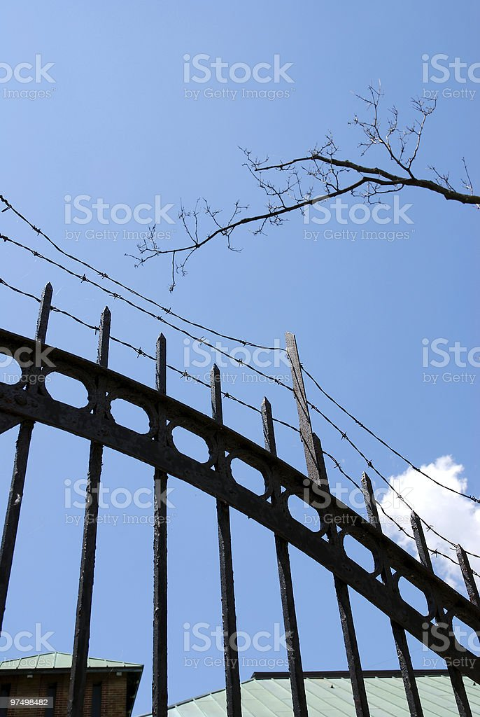 Wire fence royalty-free stock photo