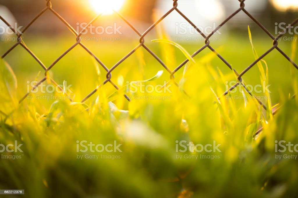 wire mesh at sunset stock photo
