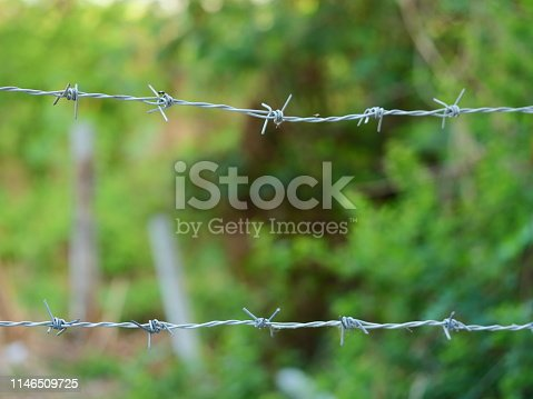 91708255 istock photo wire stuck to fencing 1146509725