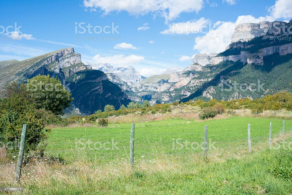 wired fence royalty-free stock photo