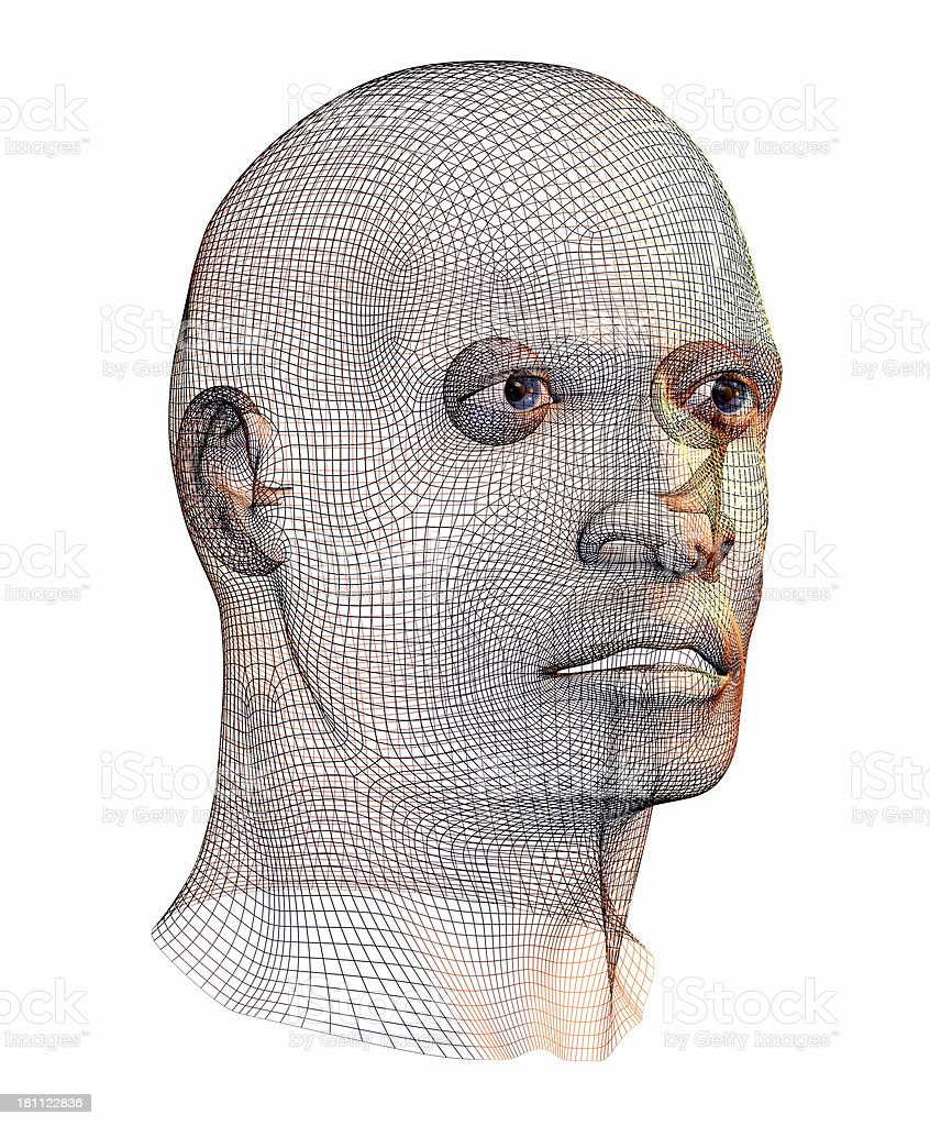 Wired Human Face royalty-free stock photo