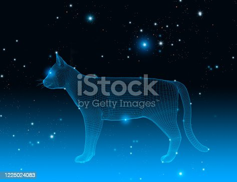 istock Wireframe cat in a dark space with stars, constellation, 3d illustration 1225024083