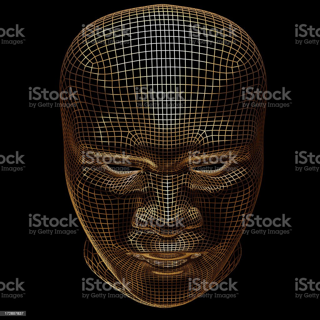 3D - WireFrame Head 3 royalty-free stock photo