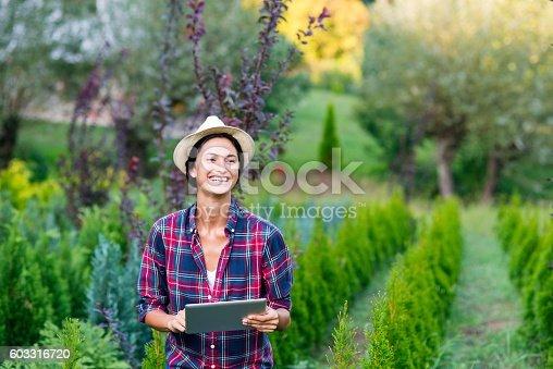 1043434558 istock photo Wireless gardening gadget 603316720
