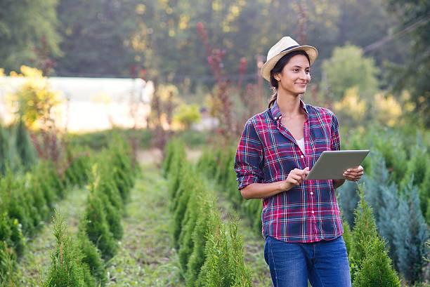 wireless gardening gadget - garden types stock-fotos und bilder
