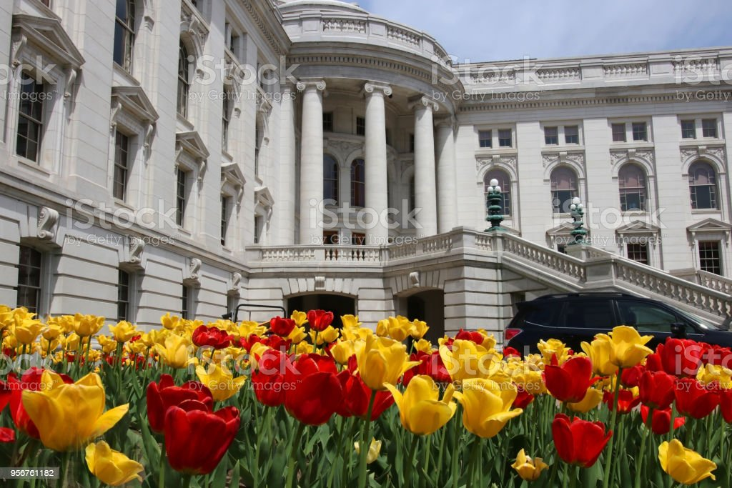 Wisconsin State Capitol building, hystorical landmark. Wisconsin State Capitol building spring view with flower bed with bright tulips on a foreground. City of Madison, the capital city of Wisconsin, Midwest USA. Architectural Column Stock Photo
