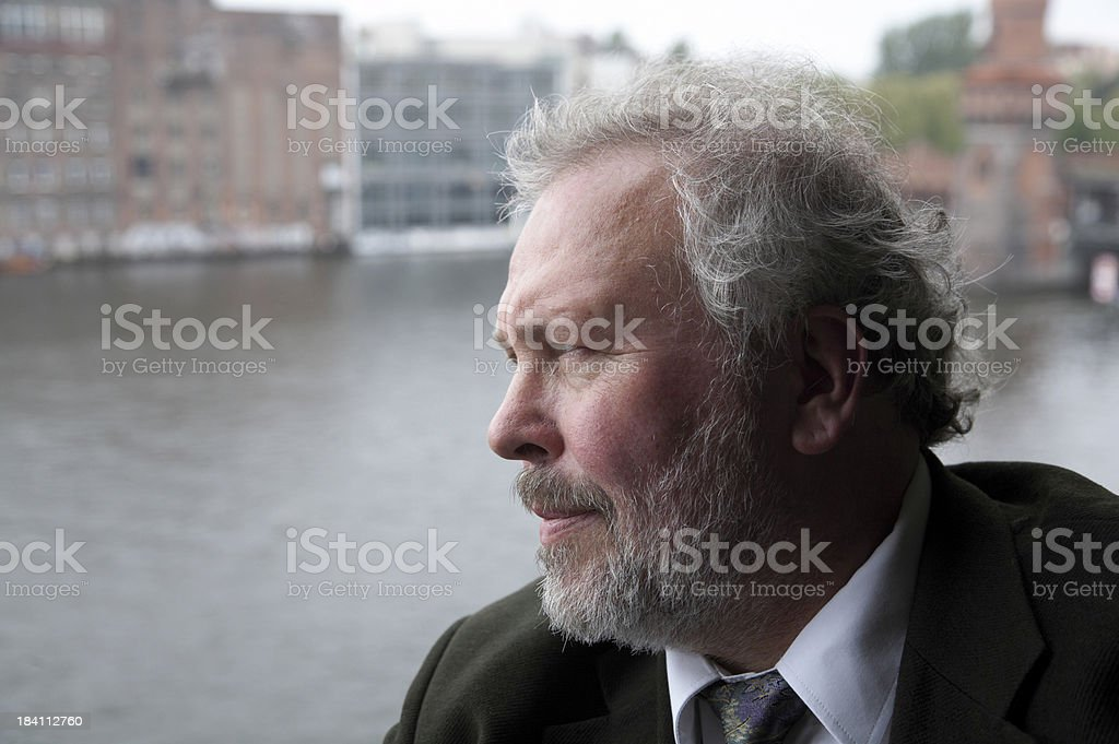 Wise Businessman royalty-free stock photo