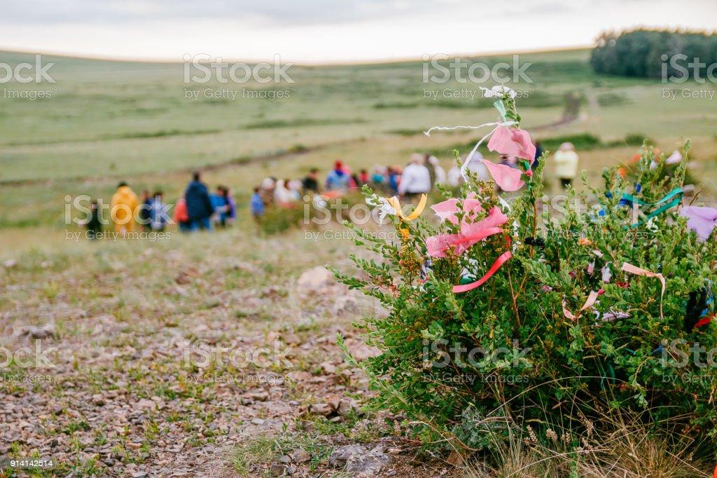 wish tree, ribbons on the tree, arkaim stock photo