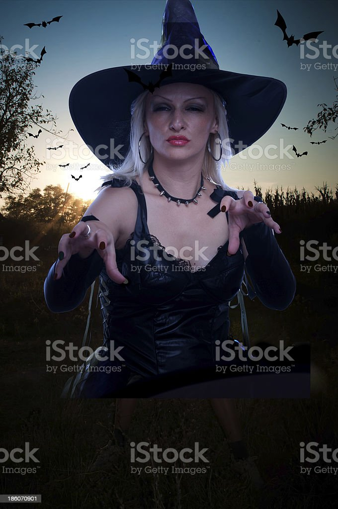Witch and bats royalty-free stock photo