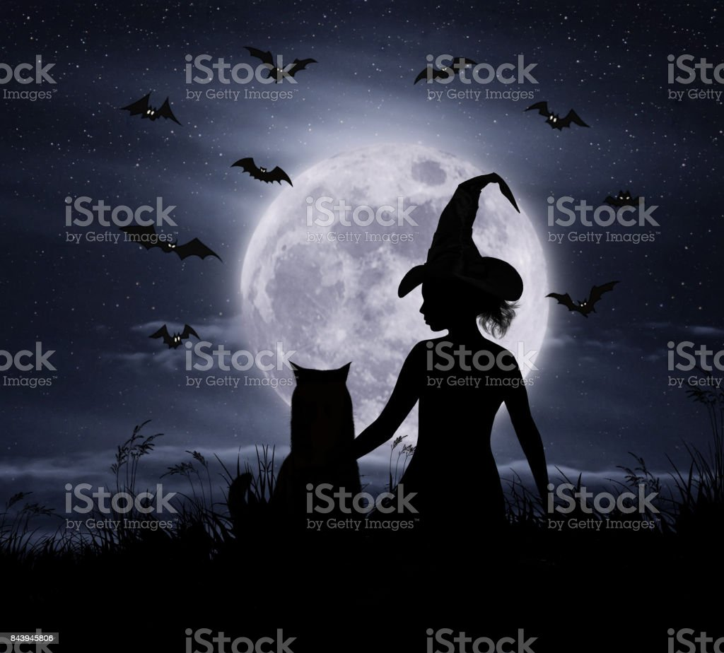 Witch and her cat 2 stock photo