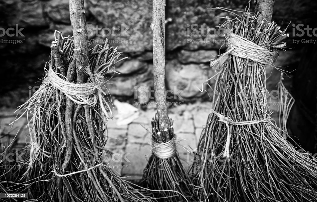 Witch brooms Detail stock photo