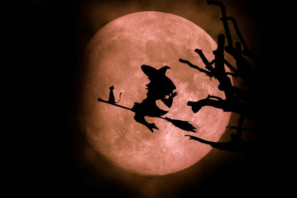 Witch silhouette moon backgroundhalloween picture id807176034?b=1&k=6&m=807176034&s=612x612&w=0&h=heksjati5vr5uw1b49oktk1kxv4puaa7la8m5i3gygo=