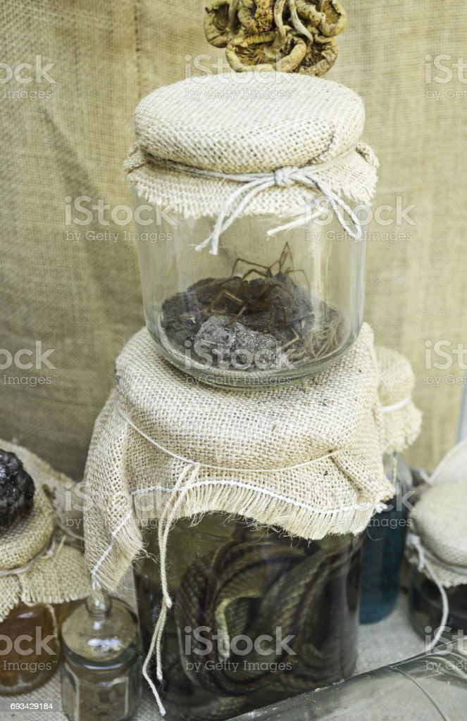 Witchcraft and Snake stock photo