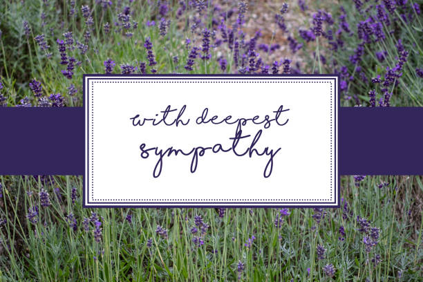 With deepest sympathy card with lavender background With deepest sympathy card with lavender scrub background, purple text and white boxes consoling stock pictures, royalty-free photos & images
