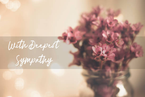 With Deepest Sympathy Card With Pink Bergenia in a Glass Vase Background With deepest sympathy card with pink bergenia in a glass vase background, white script text and a focus box consoling stock pictures, royalty-free photos & images
