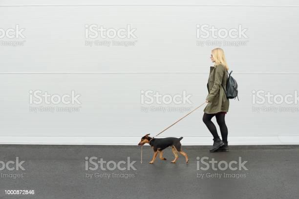 With dog girl walking with her dog picture id1000872846?b=1&k=6&m=1000872846&s=612x612&h=89dv14u oshb7dirxydnogehpnnlijdbxfj8xsrplky=